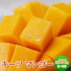 《送料無料》沖縄県産 キーツマンゴー(多少の訳あり) 1〜3玉 約800g ○
