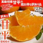 みかん 柑橘 愛媛県産 スレ・傷有・サイズ不揃い 「訳あり甘平」 約2.5kg 送料無料