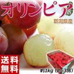 《送料無料》新潟県産 ハチミツぶどう「オリンピア」 約1キロ(2〜3房)※冷蔵 frt ☆