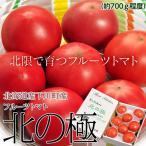『北の極 フルーツトマト』 北海道・下川町産 約700g(6〜12玉...