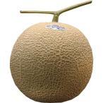 メロン クラウンメロン 静岡県産 小玉1玉 等級:白以上 約1kg 送料無料 簡易梱包