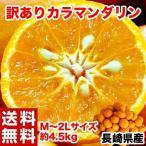 長崎県産 訳ありカラマンダリン M〜2Lサイズ 約4.5kg 送料無料