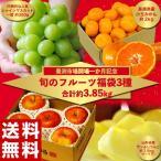福袋 詰め合わせ 豊洲市場開場一か月記念「旬のフルーツ3種福袋 」送料無料