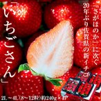 『いちごさん』佐賀県産いちご 2L~4L (8~12粒)約240g×4パック ※冷蔵 送料無料【★】#元気いただきますプロジェクト