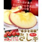 送料無料 青森県産 りんご「さしゃ」 約3kg 5〜9玉  特A品 frt ☆