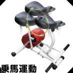 電源不要 乗馬運動 エクササイズ器具 ウエストの引き締め 骨盤周りの筋肉強化に ヘルスジョバー eco 家庭用