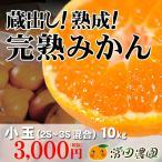 完熟みかん-10kg小玉(2S〜3S混合)
