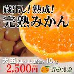 完熟みかん-10kg大玉(LL・3L混合)