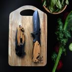 ブローニング フォールディングナイフ X-50 202mm  ステンレス製 折り畳みナイフ フィッシング、キャンプ BROWNING 新品