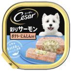 マースジャパン シーザー あじわいサーモン風味 ポテトとにんじん入り CE36N (100g) 成犬用