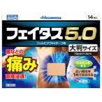 【第2類医薬品】久光製薬 フェイタス5.0 大判サイズ (14枚入)