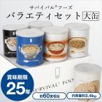25年保存サバイバルフーズ[大缶] バラエティセット6缶詰合/クラッカーx2 チキンシチューx1 野菜シチューx1 とり雑炊x1 えび雑炊x1)|