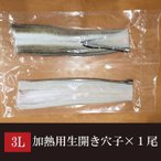 加熱用 生開きあなご×1尾 製品重量約165g/長さ48-53cm