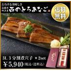 4L 3分割煮穴子×6 ギフト 長崎県 対馬西沖産 とろける美味しさ 西のとろあなご 【送料無料】
