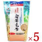 大潟村あきたこまち生産者協会 あきたこまち発芽玄米 鉄分 1kg × 5袋 栄養機能食品 鉄分