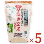 大潟村あきたこまち生産者協会 大潟村あきたこまち早炊き玄米 無洗米 栄養機能食品 鉄分 1kg × 5袋 ケース販売