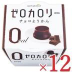 遠藤製餡 0カロリー チョコ ようかん 90g × 12個 ケース販売
