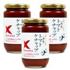 キングソース 減塩 トマトケチャップ 300ml × 3個 ケンシヨー
