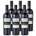 サン・マルツァーノ コレッツィオーネ・チンクアンタ +3 750ml × 6本  Collezione 50 赤ワイン