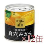 送料無料 にっぽんの果実 愛媛県産 真穴みかん 190g ×12缶 [K&K]