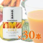 サンスター 健康道場 黄実野菜 缶 160g × 30本入り