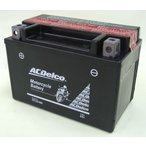 最大1年保証 ACデルコ製 バイクバッテリー DTX9-BS [XJR400R FZX250ジール FZR400RR FZR750R 他]