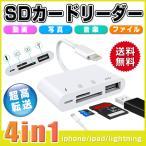 SDカードリーダー iPhone iPad USBポート Lightning 4in1 TFカード 転送 写真 送料無料