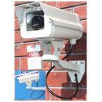 SA-50842 高級ダミーカメラ /屋外防雨仕様 SA-4100D 赤色LED 数年点滅式
