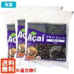 3袋セット フルッタ アサイー 冷凍パルプ ピューレ (100g×4袋入)×3セット 冷凍便