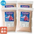4袋セット・送料無料 アンデスの岩塩 粉 (こな) 紅塩 500g×4個 食塩