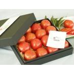 kitachi ROSSO 化粧箱入り1.0kg 塩熟トマト トマト ギフト