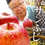 【送料無料】青森県産りんご 贈答用 サンふじ5kg (約12玉〜18玉)産地直送 お歳暮 ギフト 内のし付き