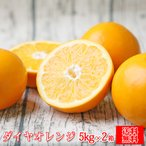 (sdaiya 0502)ダイヤオレンジ -大谷伊予柑- 5kg×2箱 (多少の枝傷・葉傷・黒点有り)(家庭用・大小サイズ込み)(送料無料)みかん 大谷伊予柑 ダイヤオレンジ