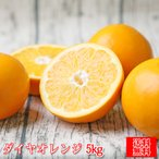 (sdaiya 05)ダイヤオレンジ -大谷伊予柑- 5kg (多少の枝傷・葉傷・黒点有り)(家庭用・大小サイズ込み)(送料無料)みかん 伊予柑 大谷伊予柑 ダイヤオレンジ