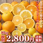 (f 08)吉田 みかん 詰め合わせ ファミリーセット8kg (葉傷・黒点が含まれます)(基本送料無料)(セール)みかん ミカン 蜜柑
