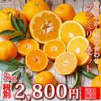 (f 05)吉田みかん 詰め合わせ ファミリーセット 5kg (多少の枝傷・葉傷・黒点等が含まれます)(送料無料)みかん