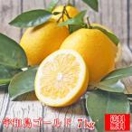 (fゴ 07)宇和島ゴールド 7kg (葉傷・枝傷・黒点のあるものが含まれます)(送料無料)河内晩柑 夏文旦 みかん