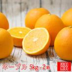 (S厳ネ 0502)厳選 ネーブル 5kg×2箱 (多少の枝傷・葉傷・黒点有り)(家庭用・サイズ込み)(送料無料)みかん ミカン 吉田みかん ネーブル フルーツ 果物 柑橘