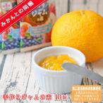 (同梱jam素 10)手作りジャムの素 30g×10個 (※本商品はみかんとの同梱商品です。)(送料無料)ジャム 手作りジャム 果物 くだもの