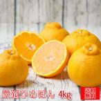 (S厳ひめ 05) 厳選 ひめぽん 5kg  (不知火・でこぽんと同品種) (多少の葉傷・黒点あり、サイズ込み)(送料無料)みかん しらぬい 柑橘 ミカン