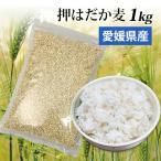国産 大麦 押はだか麦 1kg もち麦と同じ はだか麦のうるち性 100% βグルカン豊富 ポイント消化