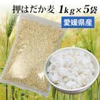 国産 大麦 押はだか麦 5kg もち麦と同じ はだか麦のうるち性 100% βグルカン豊富