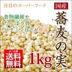 (9月中旬以降発送)国産 そばの実 1kg 北海道産 ソバの実