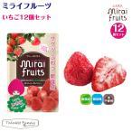 フリーズ ドライフルーツ 砂糖不使用 無添加 ミライフルーツ いちご 12個セット 赤ちゃん おやつ