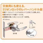 玄関ドアのノブをレバーハンドルへの交換セット、鍵付き間仕切錠タイプ100
