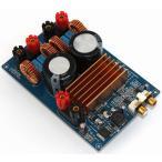 TOYOSO TPA3255 デジタル パワーアンプ D級 オーディオ アンプ アセンブリー ボード 300W + 300W HiFi