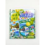 沖縄限定 森永製菓 ハイチュウ シークワサー味 5本入り
