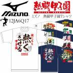 [自社]ミズノ MIZUNO 野球 熱闘甲子園Tシャツ 12JA6Q17/野球Tシャツ/ベースボールシャツ/2016〜17年秋冬モデル[M便 1/1]