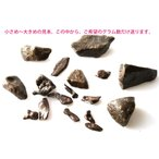 ���٥��� ���  ���� �ʥ��������������ʥ��� 1����������Gibeon meteorite