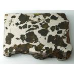 ���ߥ�å����ѥ饵���ȡ���Ŵ��С�125.6g��Imilac Pallasite Meteorite